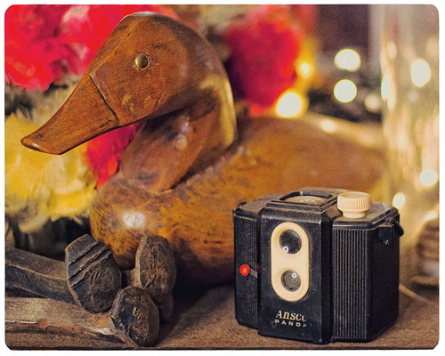 365 Day 296: Camera Porn (Week 2): Ansco Panda with a Wooden Mallard by ★ 0091436 ★