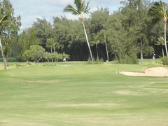 Turtle Bay Colf Course 106