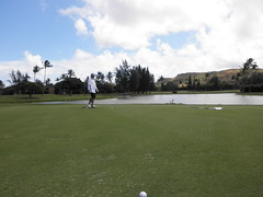 Turtle Bay Colf Course 208