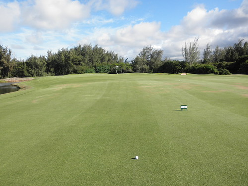 Turtle Bay Colf Course 337