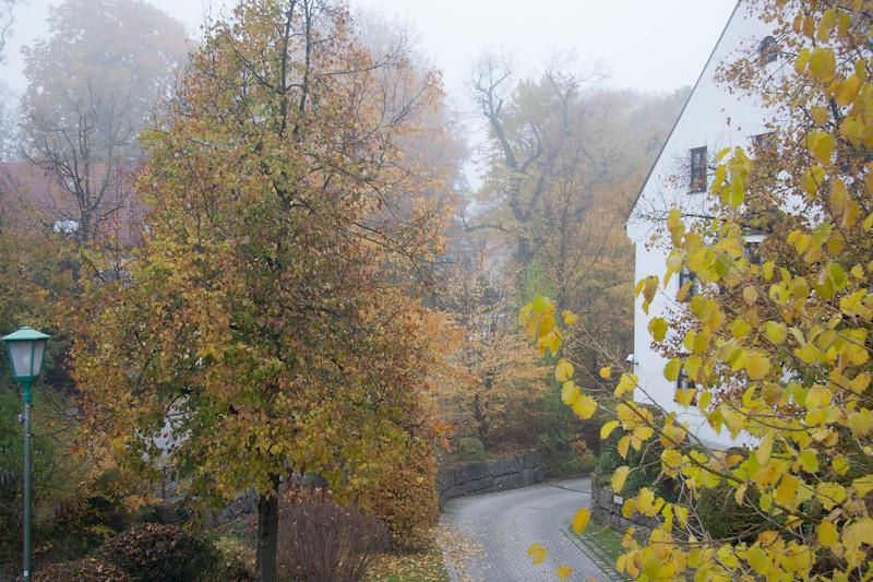 Herbstnebelmorgen