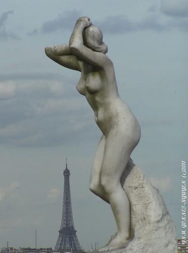 Jardin du Trocadéro / Parc de Saint-Cloud / Domaine National de Saint-Cloud / Hauts de Seine 92 / Ceinture Verte de Paris / Arboretum / Jardin Botanique / Parc à l'anglaise / Arbres Rares Remarquables Vénérables