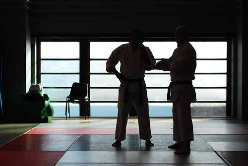 6299931806 5545078822 London & Hove Shodokan Aikido Festival 2011