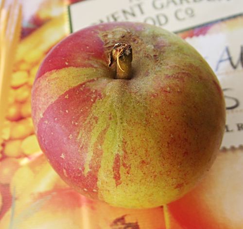 stripy apple2