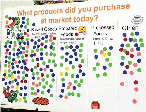 A sample of the DOT survey taken at the USDA Farmers Market in 2010.  Here, shoppers were able to indicate what products they purchased at the market.