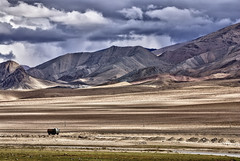 Road to Hanle. (Prabhu B Doss) Tags: india landscape army nikon bro van stallion ladakh indochina travelphotography himalyas jammuandkashmir 2011 bikeexpedition incredibleindia d80 hanle prabhub prabhubdoss zerommphotography 0mmphotography