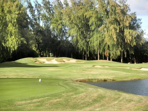 Turtle Bay Colf Course 345b