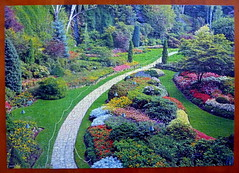 Puzzle of The Butchart Gardens (DavidK-Oregon) Tags: park desktop flowers wallpaper flower color beautiful wow wonderful catchycolors garden design colorful artistic gorgeous victoria puzzle bloom butchartgardens butchart pictureperfect terrific anawesomeshot everydayissunday absolutelystunningscapes grrreatworks