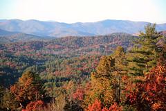 IMG_8862 (lakemontlady) Tags: county fall rabun