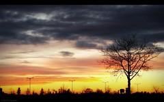 (Le***Refs *PHOTOGRAPHIE*) Tags: sunset silhouette jaune gris soleil sony coucher ciel nuage nimes arbre h5 lerefs
