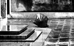 Venice and Her melancholy wet face ... (dClaudio [homofugit]) Tags: street venice bw wet umbrella nikon raining d90