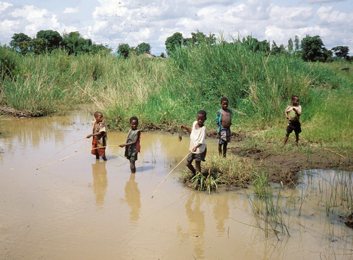 Fishing, Malawi. Photo by Randall Brummett, 2002