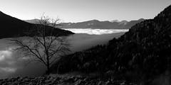 the fog is still in the valley | der nebel ist noch immer im tal (panoramafan) Tags: bw white black fog krnten carinthia sw weiss schwarz photoscape decluttr pentaxk7 smcpentaxda1855mmf3556alwr pentaxaustria