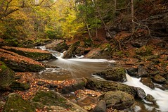 Twenty Mile Creek (Thankful!) Tags: longexposure autumn reflection fall leaves creek stream brook swirls niagaraescarpment brucetrail twentymilecreek twentyvalley