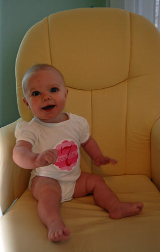 Scout 7 months chair 03
