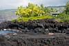 Lava rocks at Ke'ei (agasfer) Tags: sea sky beach canon palms island hawaii lava big underwater s90 2011 keei
