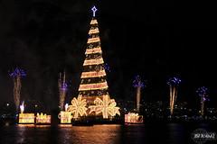 Inaugurao da rvore da Lagoa 2011/2012 (rbpdesigner) Tags: brazil slr rio brasil riodejaneiro br rj nightshot fireworks