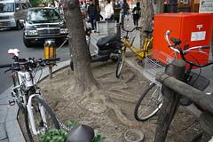 Kiyamachi bikes