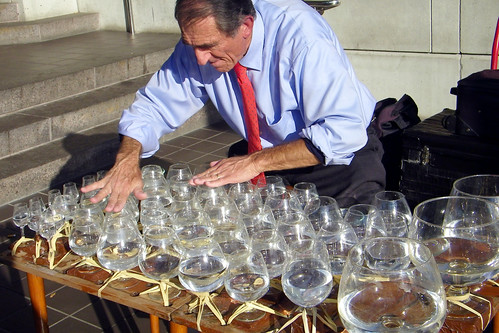 Jamey Turner plays the glass harp in Alexandria (by: runneralan2004, creative commons license)