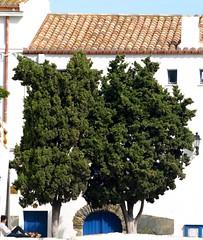 Cadaqus (lepotev) Tags: espaa spain catalonia girona catalunya espagne costabrava catalua spanien gerona cadaqus salvadordal espanya marmediterrneo