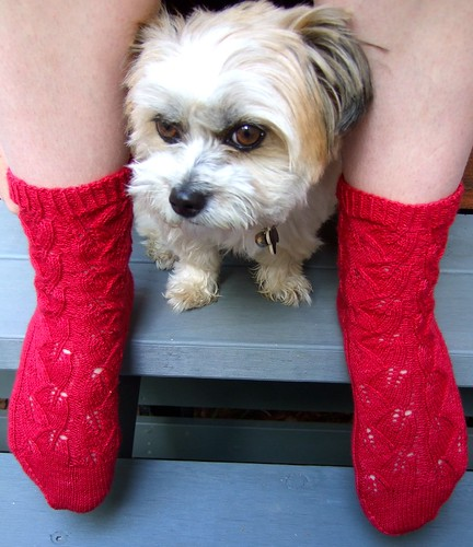 Coco and Red Socks