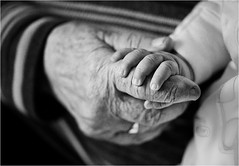 (Dan Deakin) Tags: youth hands age weathered wisdom ageing d700 nikkor105mmf28gvrmicro