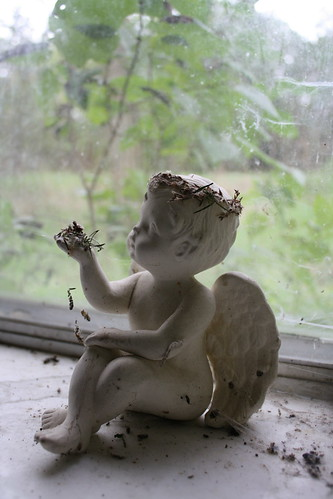 The Angel with a Crown of Thorns rests on the window sill in the bedroom, draped in a cloak of spider webs.
