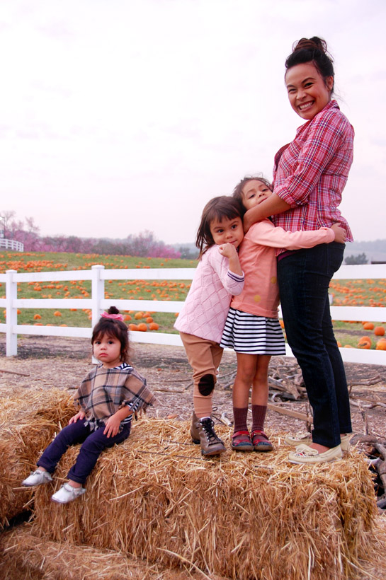 pumpkin patch 2011