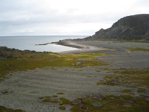 Ytre Syltevik i Syltefjorden. Det gamle fiskeværet ligger på det grønne området nedenfor hytta. Omgitt av mektige strandvoller fulle av kulturminner. Foto: Inga Malene Bruun