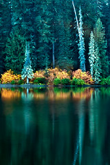Cooper Lake Portrait of a Reflection (Cascade Motif) Tags: camping trees usa mountains reflections outdoors waterfall washington woods rocks hiking path trail rivers cascades pacificnorthwest streams ferns forests brooks creeks cooperlake
