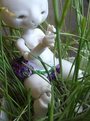 Ciboulette (Tshu) Tags: ball doll bjd jointed fenouil chimres tendres pandalilou