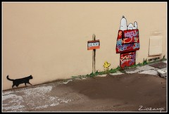 Kenny Random  #09.  (Shot__2603 F) (Ziozampi) Tags: canon eos graffiti italia fav autunno citt padova veneto curiosit 2011 eos450d 450d particolarit kennyrandom abitato 10ottobre cameraeos imgdigitale
