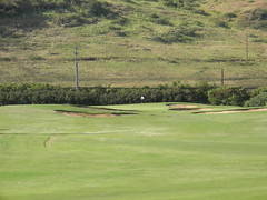 Turtle Bay Colf Course 089