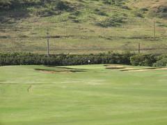 Turtle Bay Colf Course 089