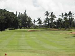 Turtle Bay Colf Course 149