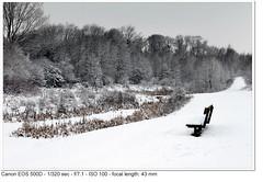 2010_01_05_1469 (John P Norton) Tags: f71 aperturepriority 1320sec focallength43mm canoneos500d efs1855mmf3556is copyright2010johnnorton