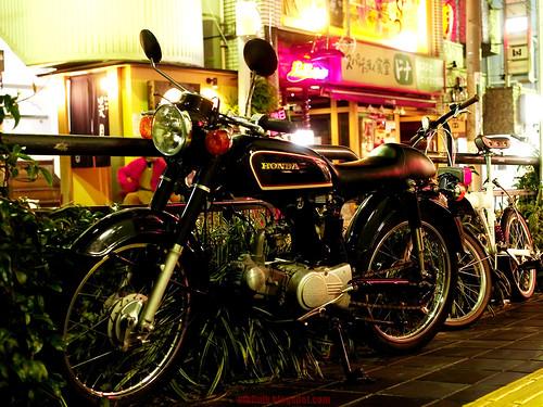 11-10-29 137のコピー by motoyan