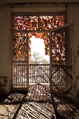 red window. (stevenbley) Tags: urban snow abandoned hospital newjersey rust bokeh decay exploring nj urbanexploration grime peelingpaint breeze asylum decayed psychiatric urbanexploring psychiatrichospital asbestos urbex sneak guerillahistorian chestdisease