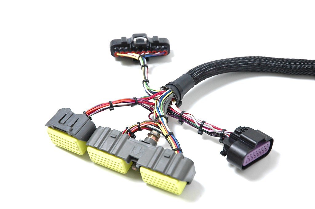 6313640536_2c13a0fa6e_b chase bays 1jz & 2jz engine harnesses nissan forum nissan forums 2jz swap wiring harness at virtualis.co