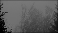 dh - en montant du col de la Molède aux rochers de la sagne du Porc un jour de brouillard en novembre