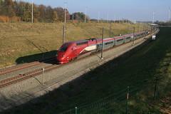 4342 Kortijs Gingelom 11-11-2011 (Break302) Tags: hsl2 thalyspbka