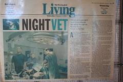 Night Vet (Vaughanoblapski!) Tags: andy night vet wellington img homestay maloney koromiko