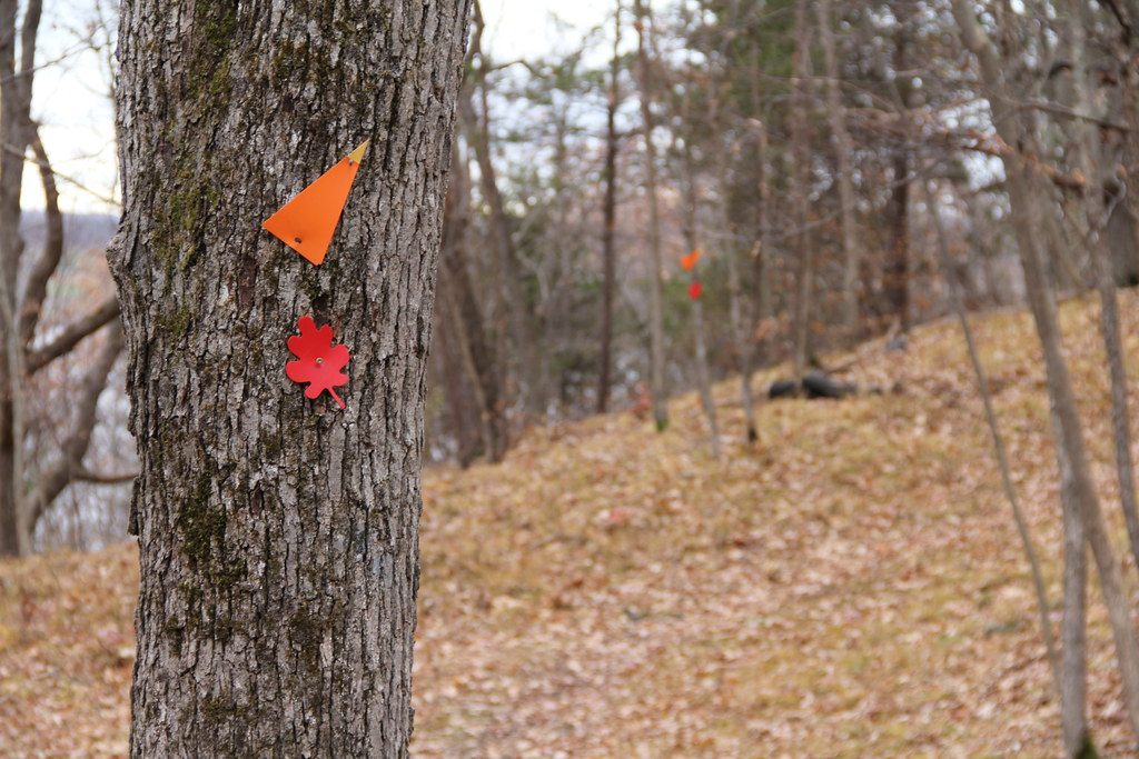 Red maple leaf trail, and Rideau Trail