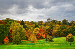 Kenwood in Autumn (garryknight) Tags: autumn red colour green london yellow nikon creativecommons hampsteadheath lightroom 1855mmvr topazadjust d5100