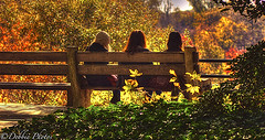 A Fall Day (D. Photos) Tags: trees fall bench hair women bags brooklynbotanicgarden youngwomen nikond2x nikon105mmlens debbiephotos ringexcellence dblringexcellence brooklynbotanicgardennature