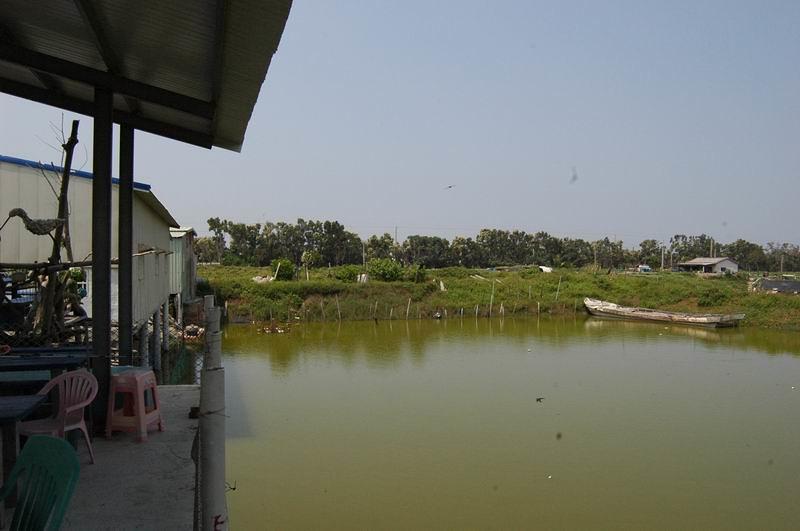 蔡恭和的文蛤池與工寮,遠方樹林即鰲鼓溼地的防風林。圖片提供:張泰迪。