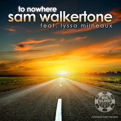 Sam Walkertone - To Nowhere