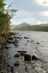 0512 Loch Rannoch (Steve Swis) Tags: uk water landscape scotland europe britain perthshire highland loch rannoch schiehallion jstevesw samsungnx5