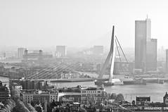 85mm / Rotterdam / Erasmusbrug / Euromast (zzapback) Tags: city urban holland