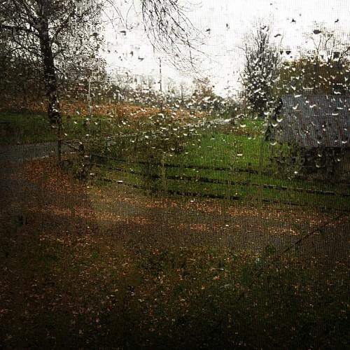 it begins...rain. sleet. snow on the way.